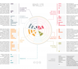 whaller_imagecentrale